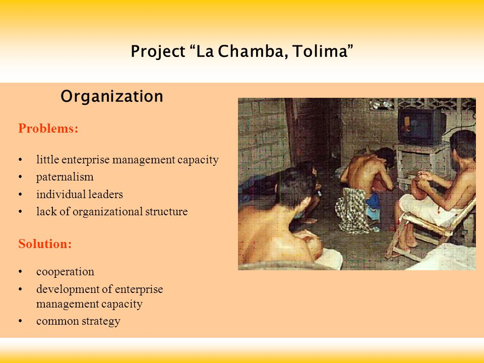 Project La Chamba, Tolima Problems: little enterprise management capacity paternalism individual leaders lack of organizational structure Solution: cooperation development of enterprise management capacity common strategy Organization
