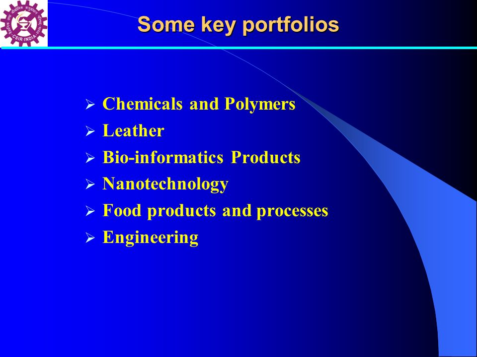 Chemicals and Polymers Leather Bio-informatics Products Nanotechnology Food products and processes Engineering Some key portfolios