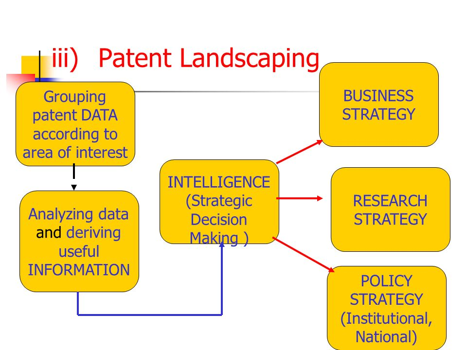 iii)Patent Landscaping Grouping patent DATA according to area of interest Analyzing data and deriving useful INFORMATION INTELLIGENCE (Strategic Decis
