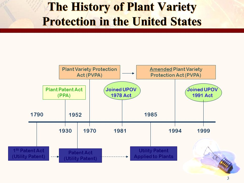 3 The History of Plant Variety Protection in the United States 1 St Patent Act (Utility Patent) 1790 193019811970 Plant Patent Act (PPA) 1985 1999 Pla