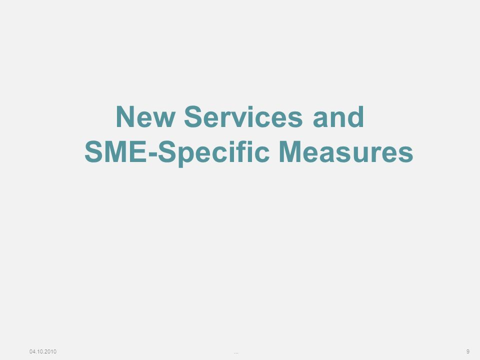 04.10.2010...9 New Services and SME-Specific Measures