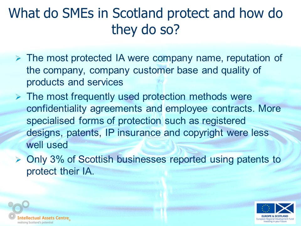 What do SMEs in Scotland protect and how do they do so.