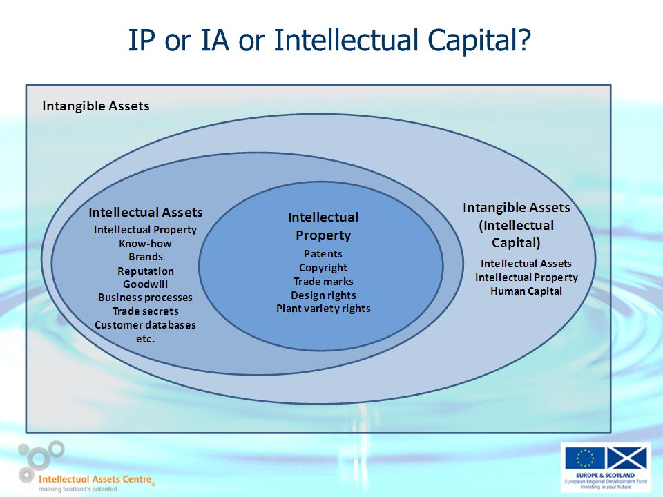 IP or IA or Intellectual Capital