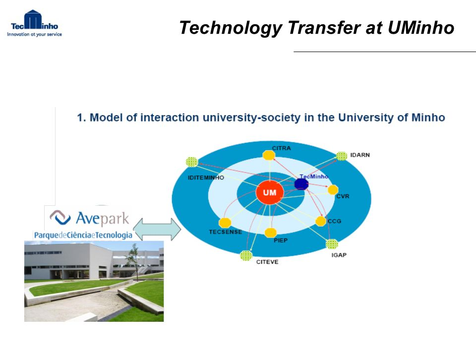 Technology Transfer at UMinho