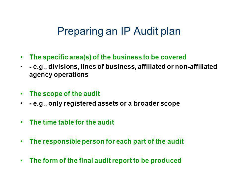 Preparing an IP Audit plan The specific area(s) of the business to be covered - e.g., divisions, lines of business, affiliated or non-affiliated agenc