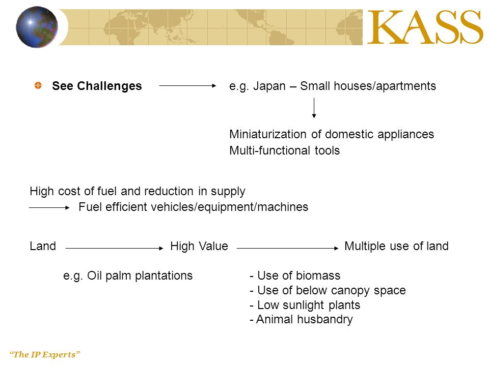 The IP Experts See Challengese.g. Japan – Small houses/apartments Miniaturization of domestic appliances Multi-functional tools High cost of fuel and
