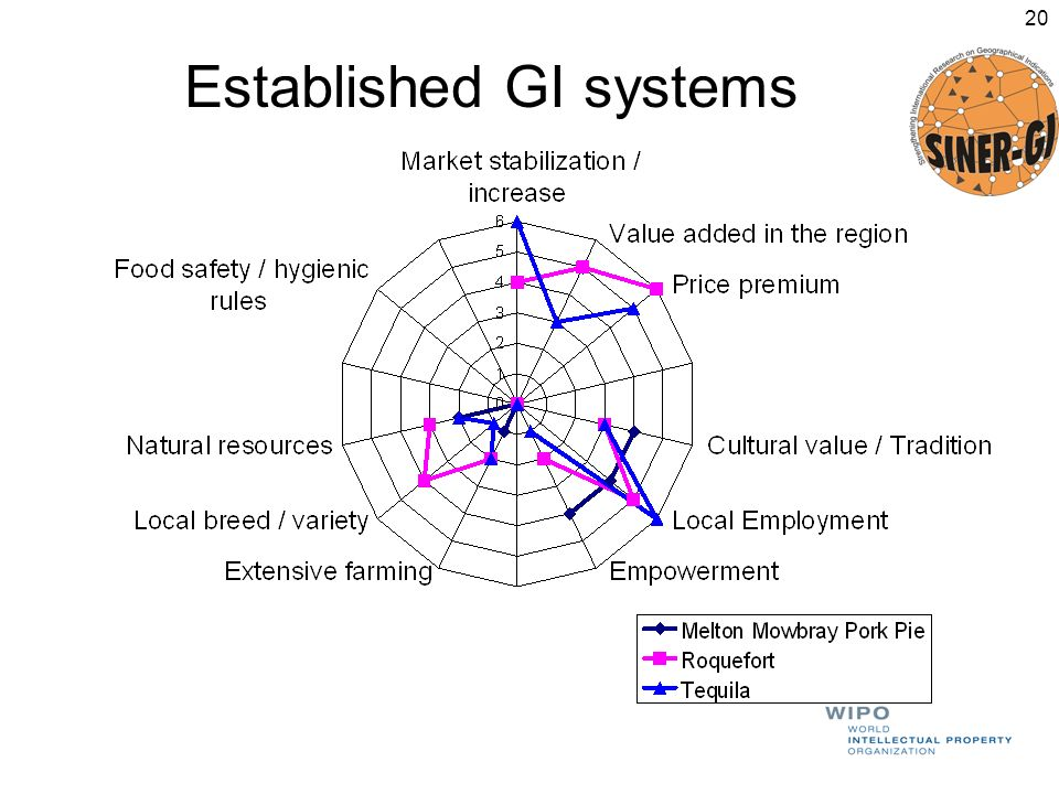 Established GI systems 20