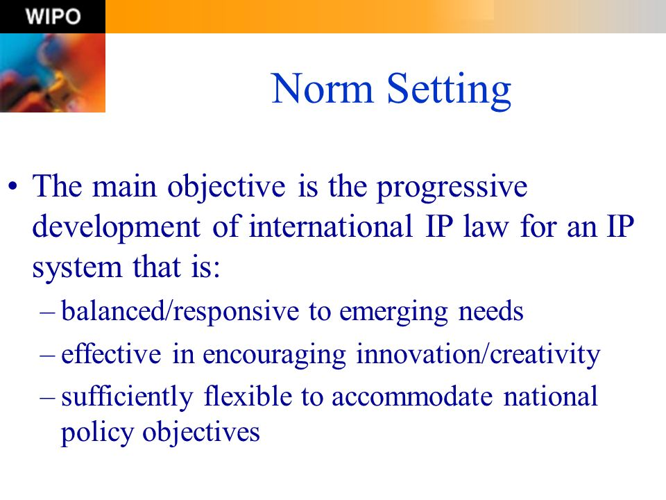 Norm Setting The main objective is the progressive development of international IP law for an IP system that is: –balanced/responsive to emerging need