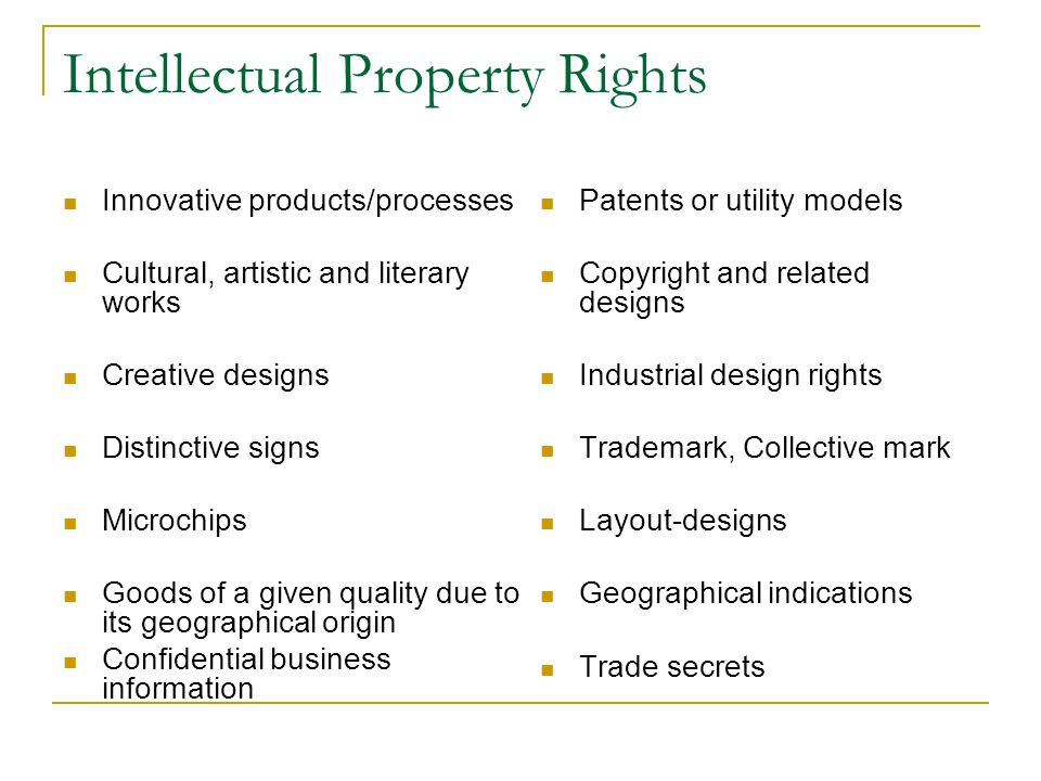 Intellectual Property Rights Innovative products/processes Cultural, artistic and literary works Creative designs Distinctive signs Microchips Goods o