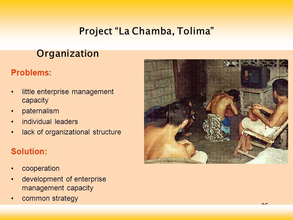 35 Project La Chamba, Tolima Problems: little enterprise management capacity paternalism individual leaders lack of organizational structure Solution: