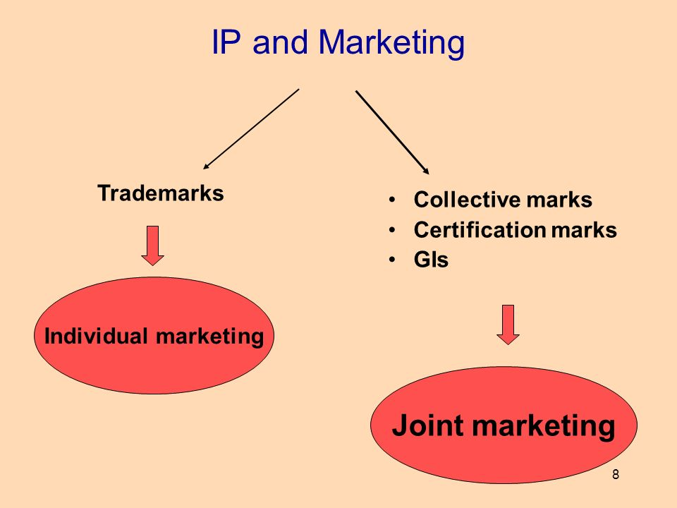 8 IP and Marketing Collective marks Certification marks GIs Trademarks Individual marketing Joint marketing
