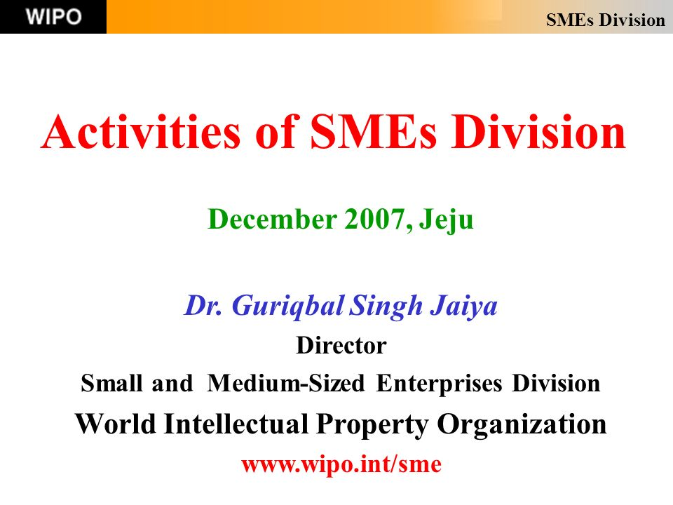 SMEs Division Activities of SMEs Division December 2007, Jeju Dr.