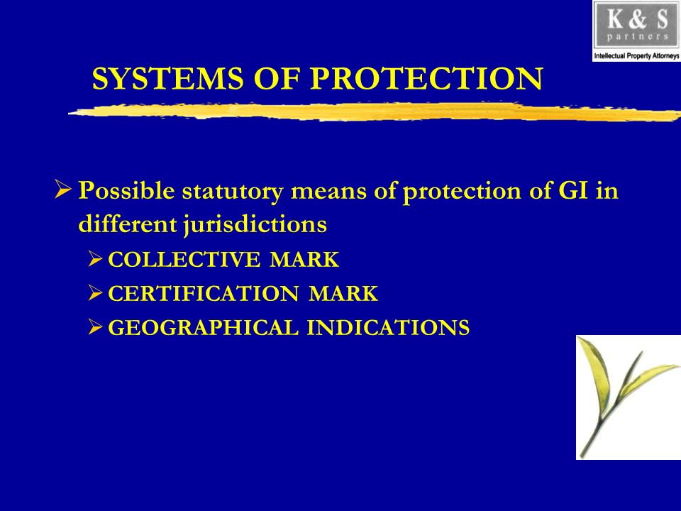 SYSTEMS OF PROTECTION Possible statutory means of protection of GI in different jurisdictions COLLECTIVE MARK CERTIFICATION MARK GEOGRAPHICAL INDICATIONS