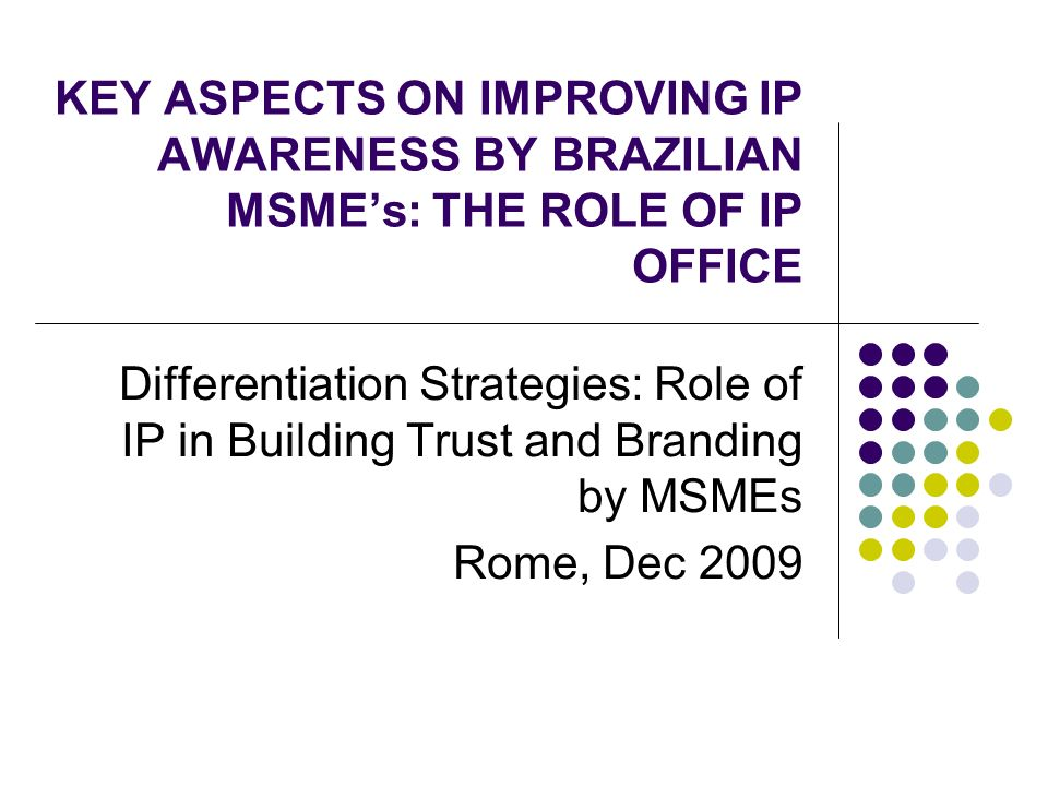 KEY ASPECTS ON IMPROVING IP AWARENESS BY BRAZILIAN MSMEs: THE ROLE OF IP OFFICE Differentiation Strategies: Role of IP in Building Trust and Branding by MSMEs Rome, Dec 2009