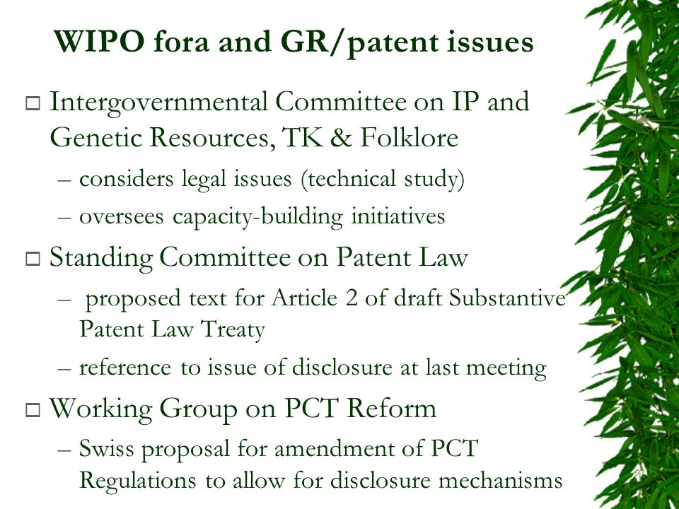 WIPO fora and GR/patent issues Intergovernmental Committee on IP and Genetic Resources, TK & Folklore –considers legal issues (technical study) –oversees capacity-building initiatives Standing Committee on Patent Law – proposed text for Article 2 of draft Substantive Patent Law Treaty –reference to issue of disclosure at last meeting Working Group on PCT Reform –Swiss proposal for amendment of PCT Regulations to allow for disclosure mechanisms