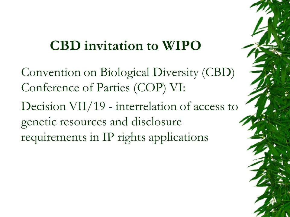 CBD invitation to WIPO Convention on Biological Diversity (CBD) Conference of Parties (COP) VI: Decision VII/19 - interrelation of access to genetic resources and disclosure requirements in IP rights applications