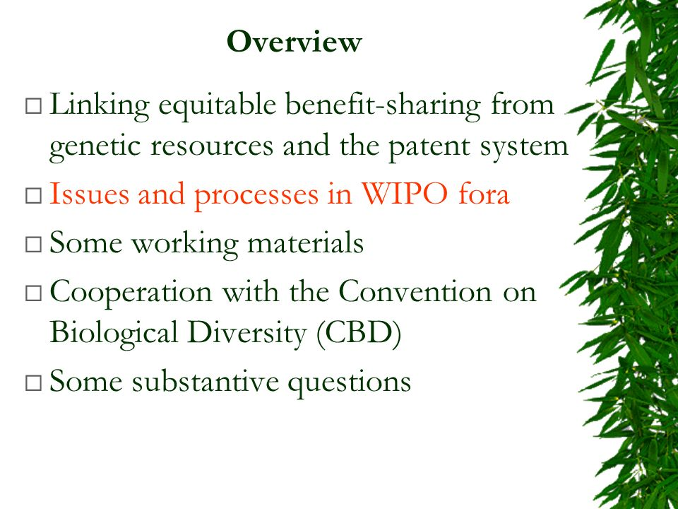Overview Linking equitable benefit-sharing from genetic resources and the patent system Issues and processes in WIPO fora Some working materials Cooperation with the Convention on Biological Diversity (CBD) Some substantive questions