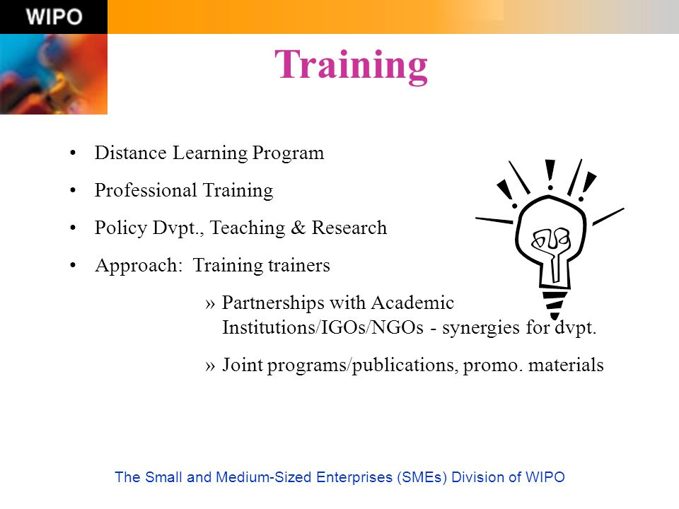 The Small and Medium-Sized Enterprises (SMEs) Division of WIPO Distance Learning Program Professional Training Policy Dvpt., Teaching & Research Appro