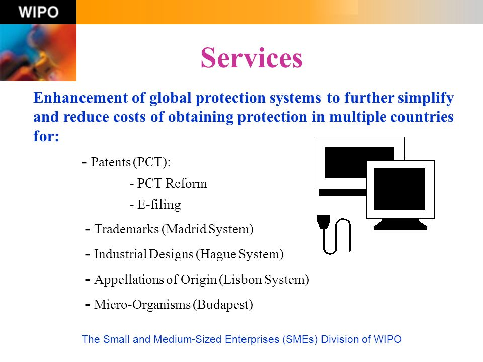 The Small and Medium-Sized Enterprises (SMEs) Division of WIPO Services Enhancement of global protection systems to further simplify and reduce costs