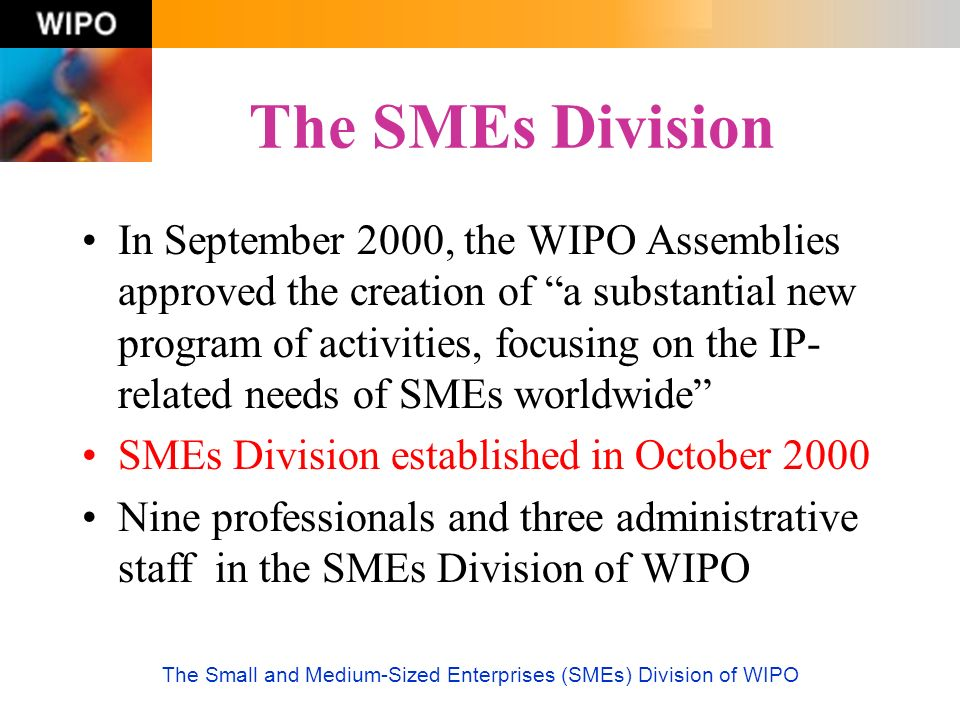 The Small and Medium-Sized Enterprises (SMEs) Division of WIPO The SMEs Division In September 2000, the WIPO Assemblies approved the creation of a sub