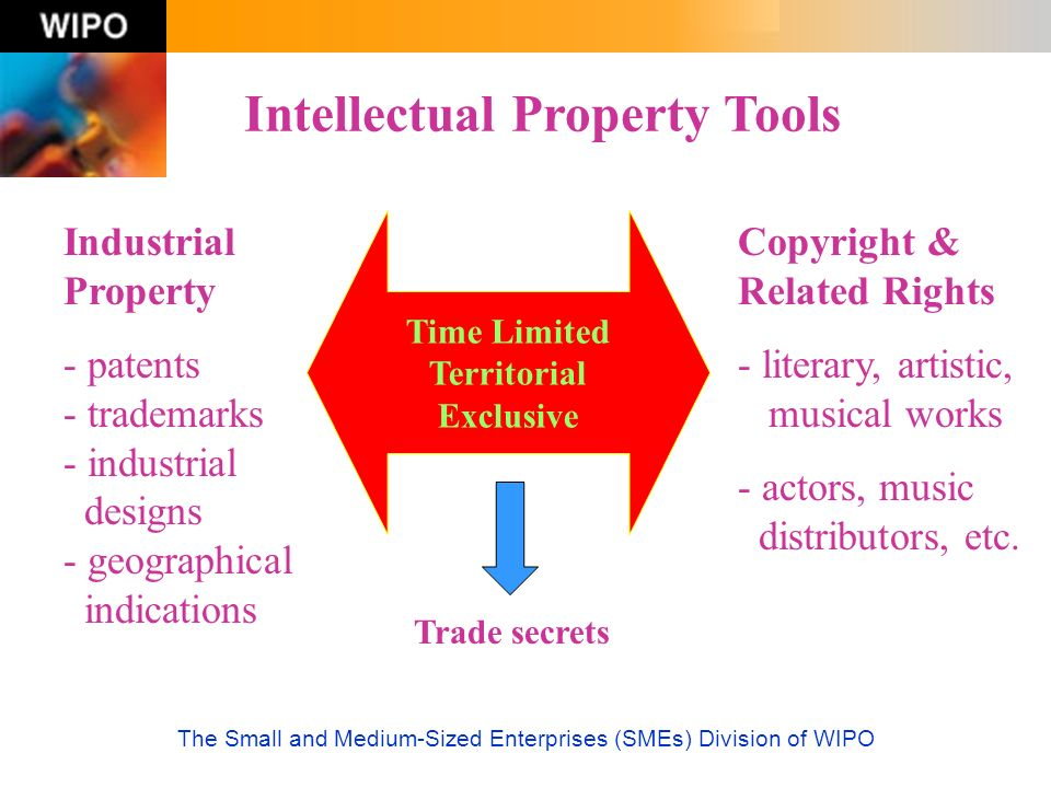 The Small and Medium-Sized Enterprises (SMEs) Division of WIPO (1) Demystification (Website) The Website of the SMEs Division is in six UN languages (English, French, Spanish, Arabic, Russian and Chinese) More than 60,000 pages viewed every month in 2004 Contents include sections such as IP for Business, IP and E-Commerce, Activities, Best Practices, Case Studies and Documents