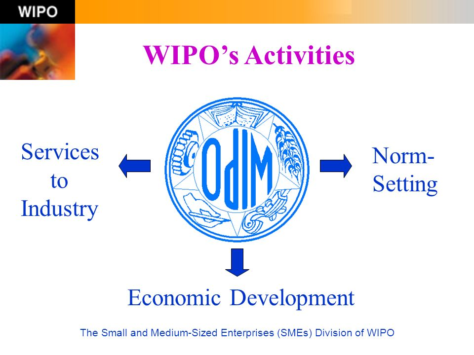 The Small and Medium-Sized Enterprises (SMEs) Division of WIPO WIPOs Activities Norm- Setting Services to Industry Economic Development