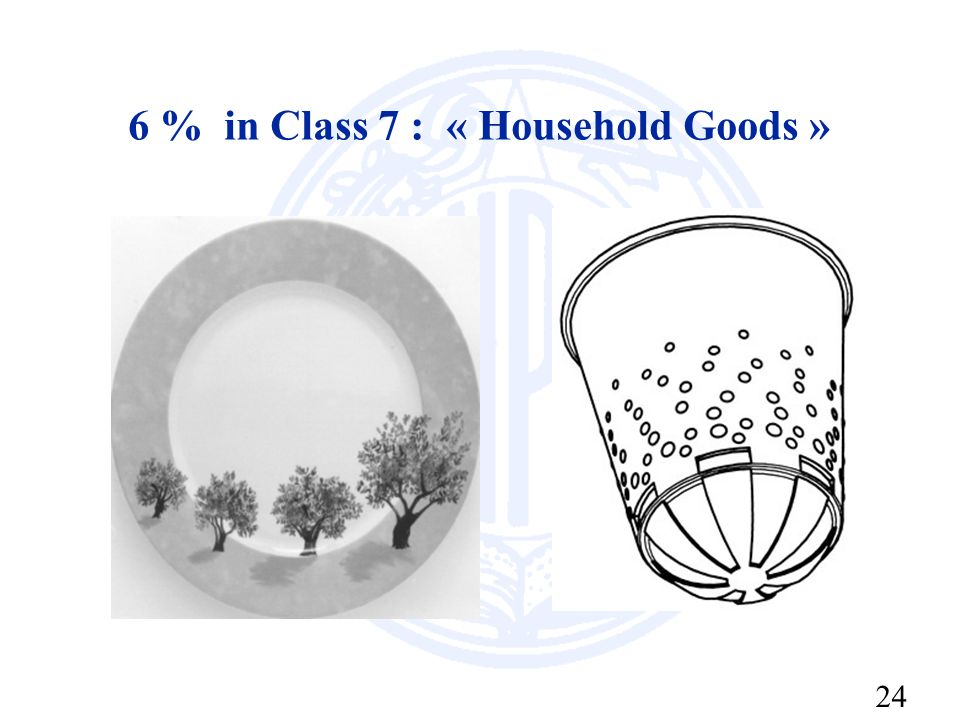 24 6 % in Class 7 : « Household Goods »