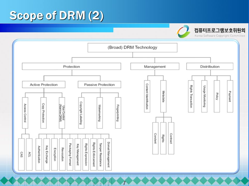 7 Scope of DRM (2)
