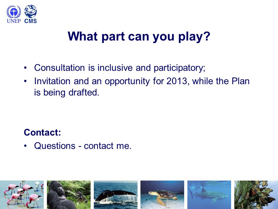 What part can you play? Consultation is inclusive and participatory; Invitation and an opportunity for 2013, while the Plan is being drafted. Contact: