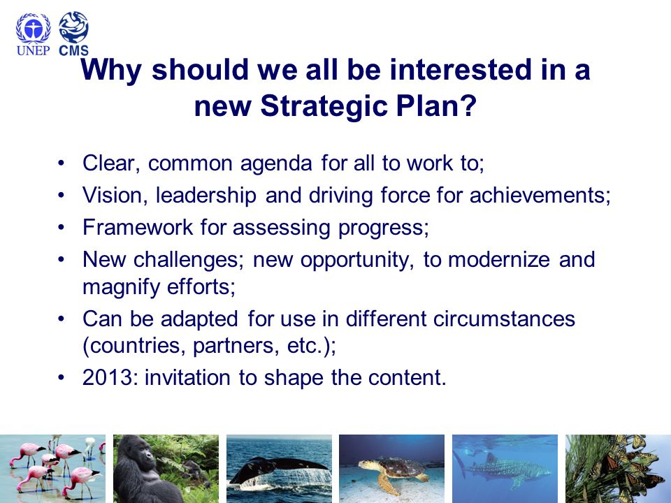 Why should we all be interested in a new Strategic Plan? Clear, common agenda for all to work to; Vision, leadership and driving force for achievement