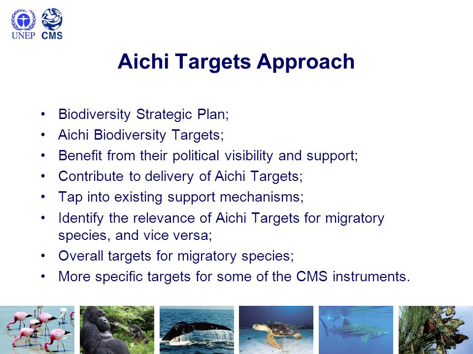 Aichi Targets Approach Biodiversity Strategic Plan; Aichi Biodiversity Targets; Benefit from their political visibility and support; Contribute to delivery of Aichi Targets; Tap into existing support mechanisms; Identify the relevance of Aichi Targets for migratory species, and vice versa; Overall targets for migratory species; More specific targets for some of the CMS instruments.