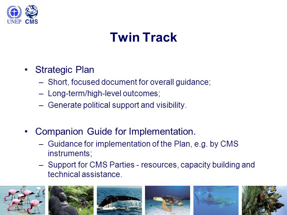 Twin Track Strategic Plan –Short, focused document for overall guidance; –Long-term/high-level outcomes; –Generate political support and visibility. C