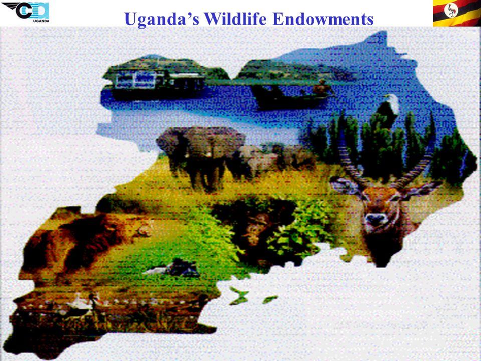 18 Ugandas Wildlife Endowments
