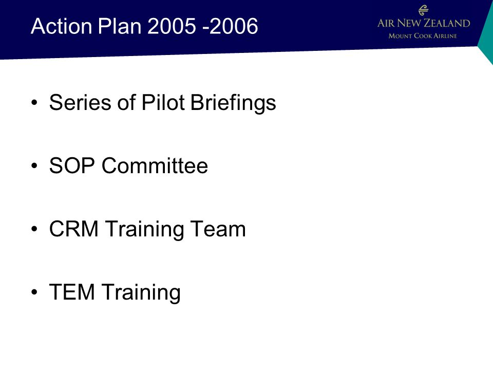 Action Plan 2005 -2006 Series of Pilot Briefings SOP Committee CRM Training Team TEM Training