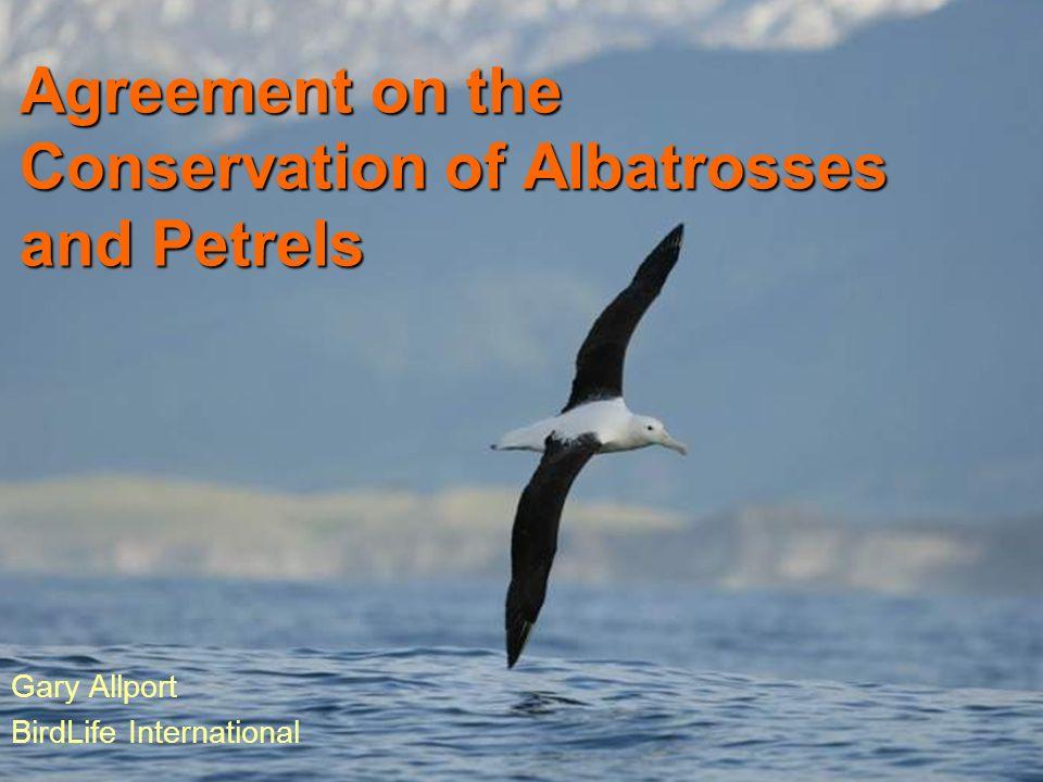 Agreement on the Conservation of Albatrosses and Petrels Gary Allport BirdLife International