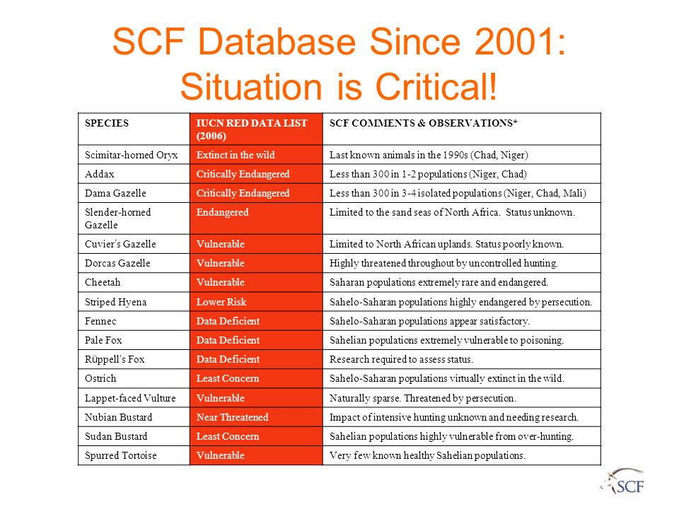 SCF Database Since 2001: Situation is Critical! SPECIESIUCN RED DATA LIST (2006) SCF COMMENTS & OBSERVATIONS* Scimitar-horned OryxExtinct in the wildL