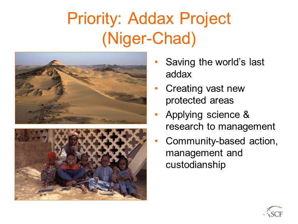 Priority: Addax Project (Niger-Chad) Saving the worlds last addax Creating vast new protected areas Applying science & research to management Communit
