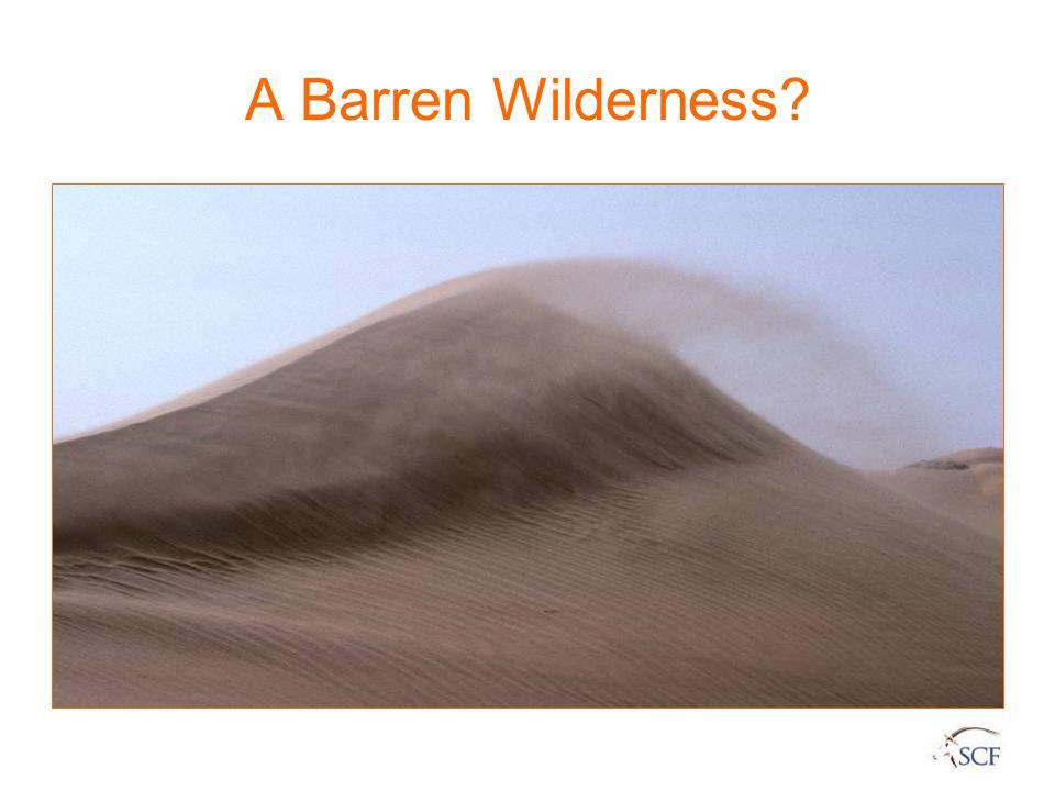 A Barren Wilderness?