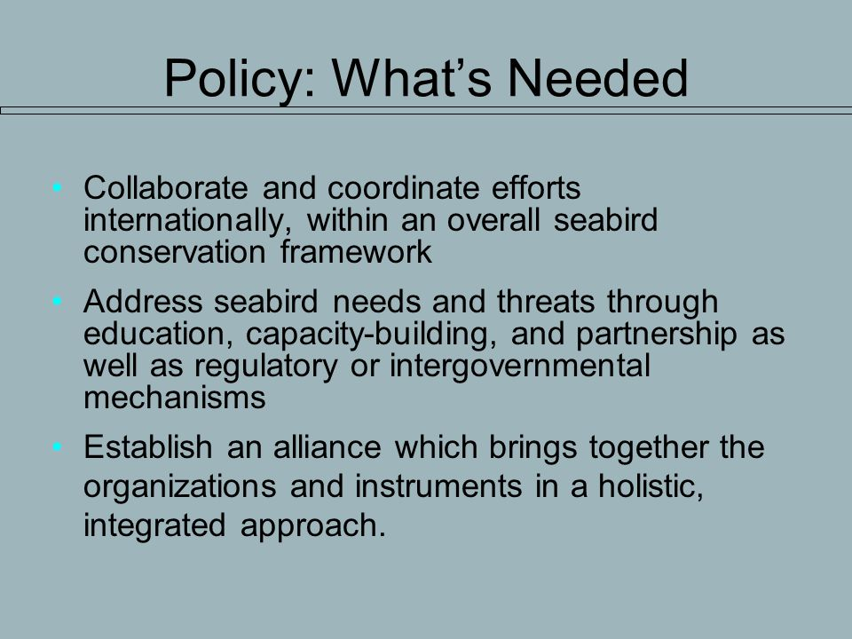 Policy: Whats Needed Collaborate and coordinate efforts internationally, within an overall seabird conservation framework Address seabird needs and threats through education, capacity-building, and partnership as well as regulatory or intergovernmental mechanisms Establish an alliance which brings together the organizations and instruments in a holistic, integrated approach.