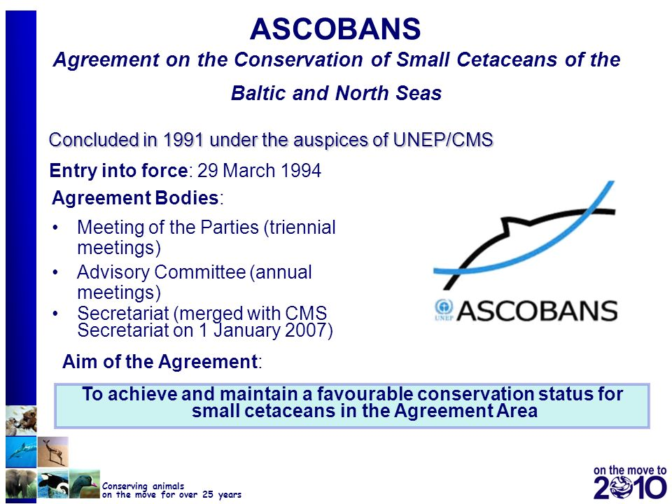 11 Conserving animals on the move for over 25 years ASCOBANS Agreement on the Conservation of Small Cetaceans of the Baltic and North Seas Concluded i