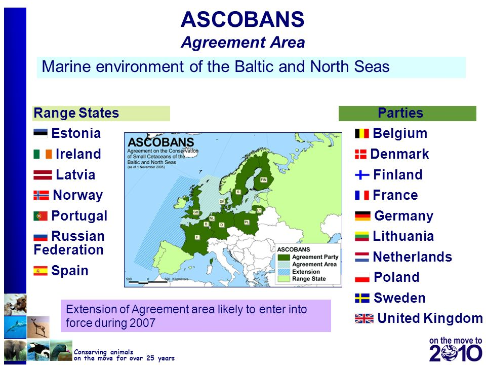 12 Conserving animals on the move for over 25 years ASCOBANS Agreement Area Marine environment of the Baltic and North Seas Range States Estonia Irela