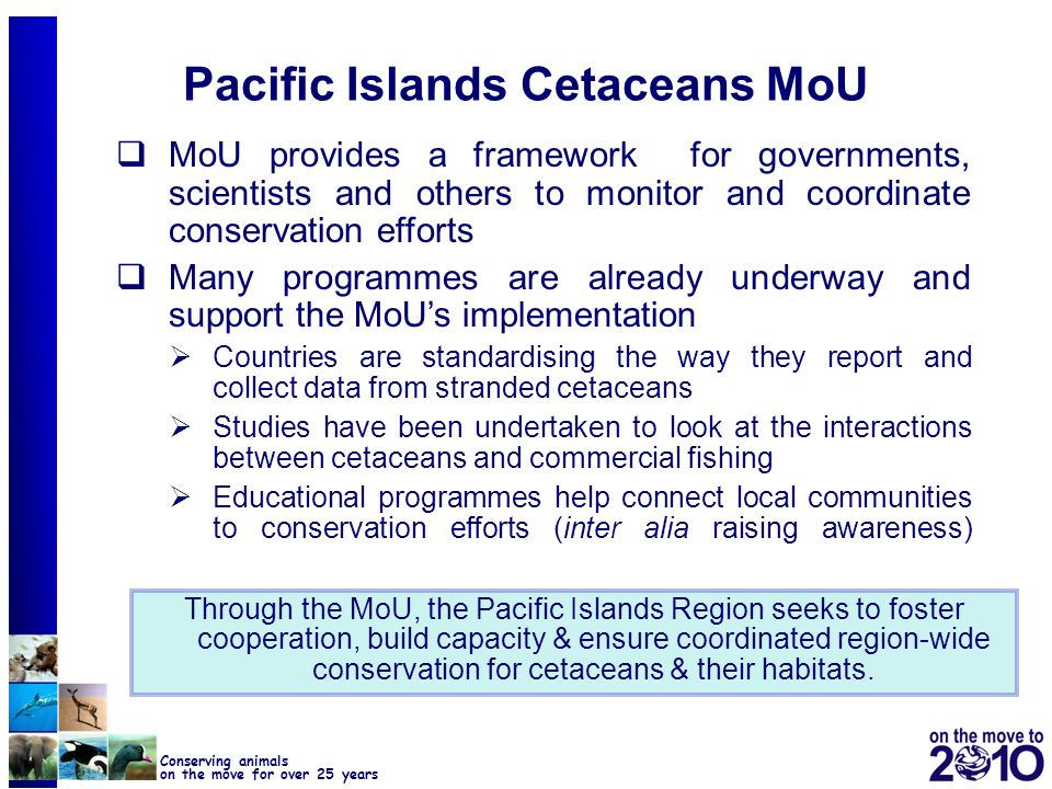 24 Conserving animals on the move for over 25 years Pacific Islands Cetaceans MoU MoU provides a framework for governments, scientists and others to m