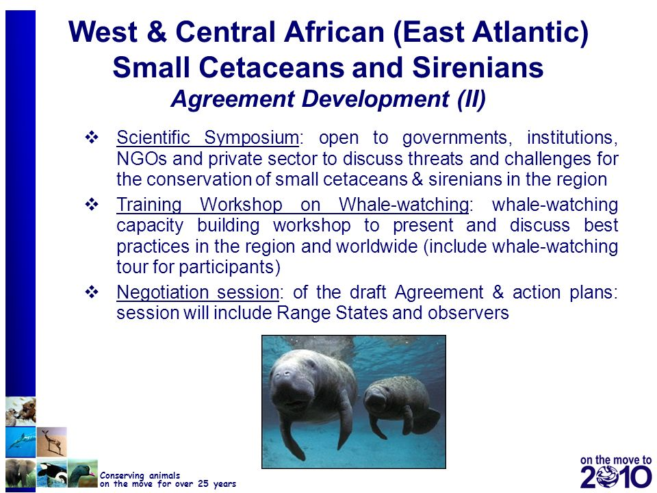 28 Conserving animals on the move for over 25 years West & Central African (East Atlantic) Small Cetaceans and Sirenians Agreement Development (II) Sc