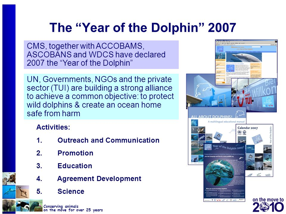 29 Conserving animals on the move for over 25 years The Year of the Dolphin 2007 Activities: 1. Outreach and Communication 2. Promotion 3. Education 4