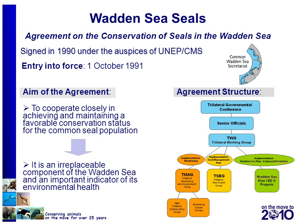38 Conserving animals on the move for over 25 years Wadden Sea Seals Agreement on the Conservation of Seals in the Wadden Sea Signed in 1990 under the