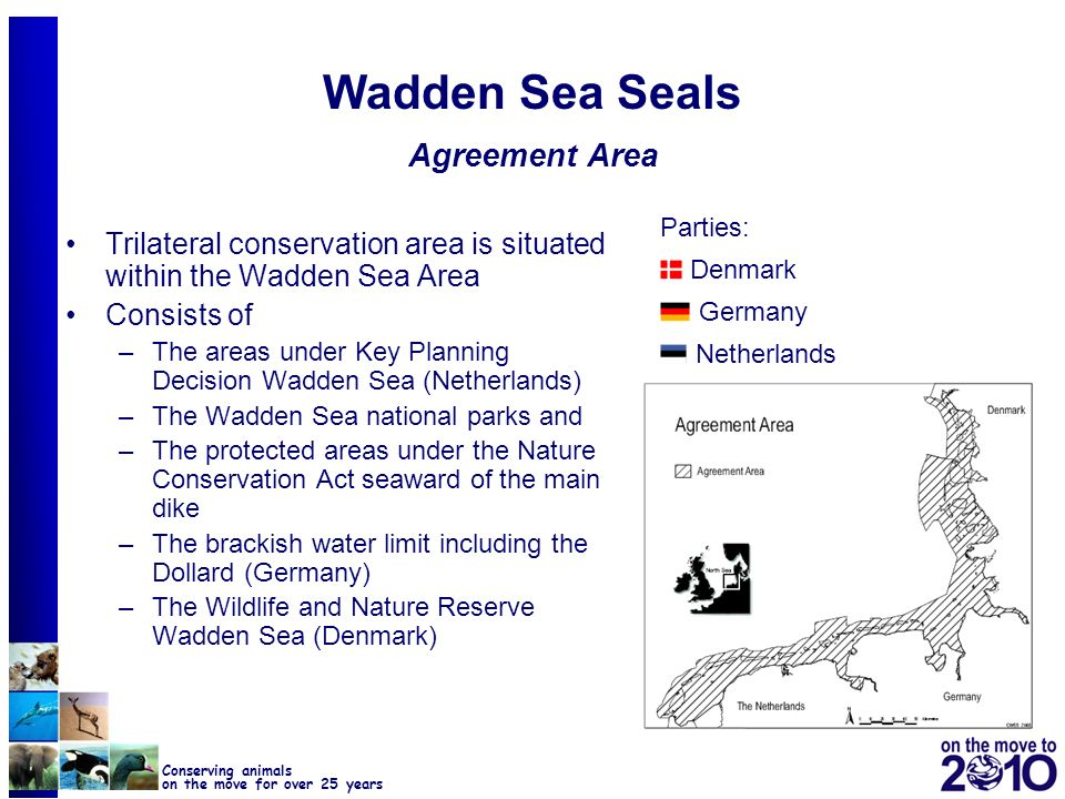 39 Conserving animals on the move for over 25 years Wadden Sea Seals Agreement Area Trilateral conservation area is situated within the Wadden Sea Are