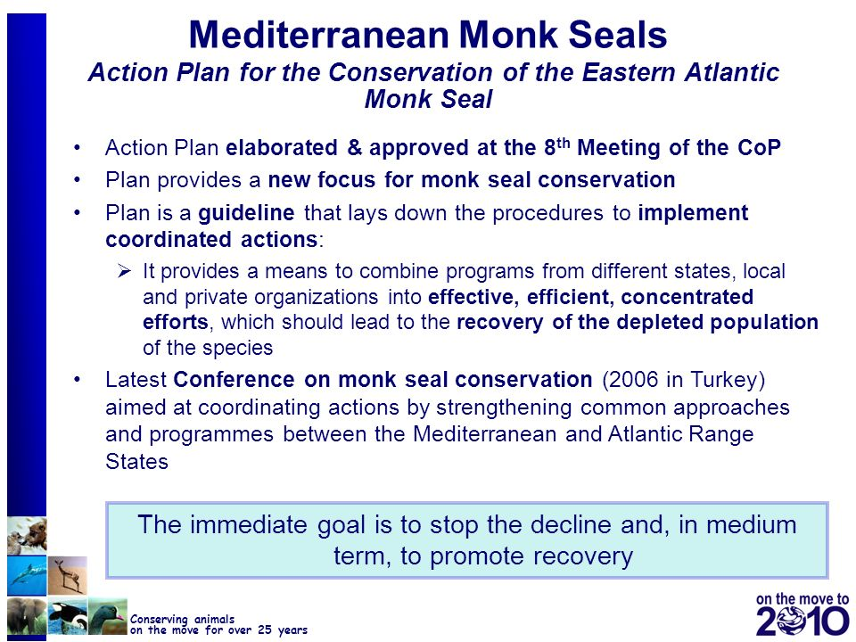 44 Conserving animals on the move for over 25 years Mediterranean Monk Seals Action Plan for the Conservation of the Eastern Atlantic Monk Seal Action