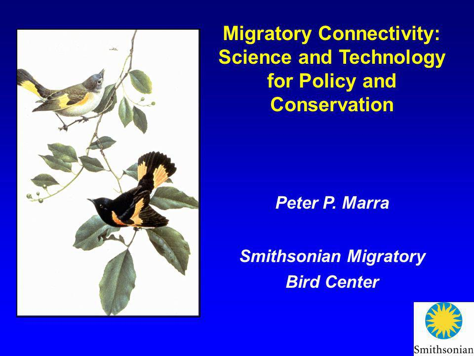 Migratory Connectivity: Science and Technology for Policy and Conservation Peter P. Marra Smithsonian Migratory Bird Center