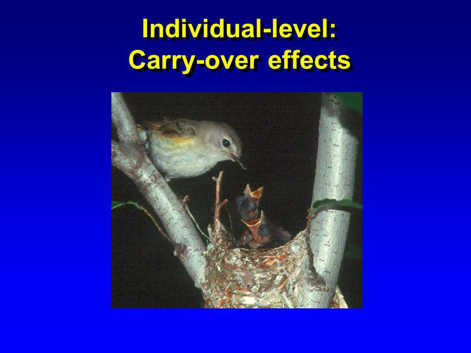 Individual-level: Carry-over effects