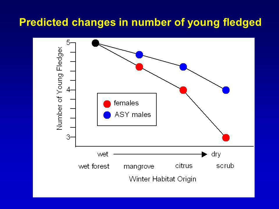 Predicted changes in number of young fledged